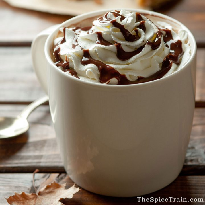A mug filled with hot chocolate topped with whipped cream and drizzled with chocolate sauce in a fall afternoon setting.